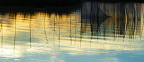湿地生态环境