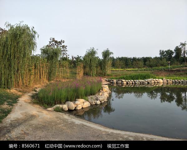 湖边小景图片
