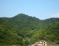 绿色树林覆盖的山岭