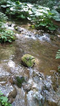 清澈的水流风景图