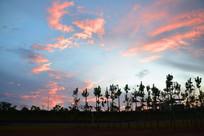 夏季红色晚霞蓝色天空