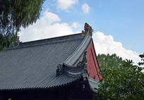 蓝天白云下的斜顶瓦房