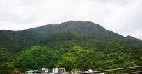 绿色大山风景图