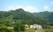 绿色山岭和山脚的房屋