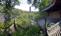 绿植掩映的古寺庙