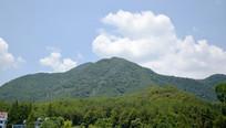 墨绿色的远山风景
