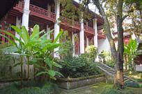 寺庙的绿植院落