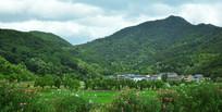 田园和高山风景摄影