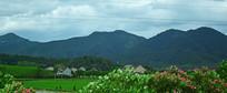 阴天里的山脉景观