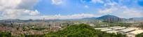 坦洲镇全景图