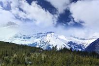 落基山脉雪山森林