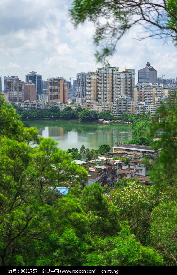 俯视惠州西湖和城市建筑景观高清图片下载 编号8611757 红动网