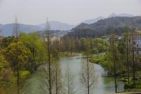 山林山青水绿