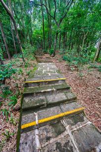 惠州飞鹅岭的小路