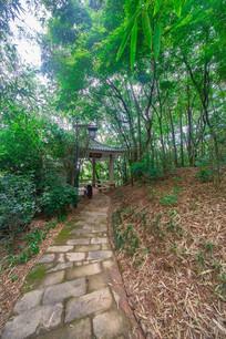 惠州飞鹅岭公园的亭子