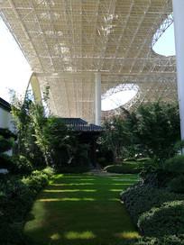 杭州G20会场空中花园