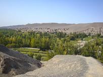 荒漠戈壁葡萄沟