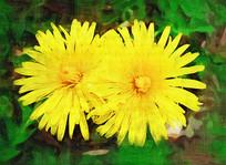 电脑油画《黄色的花》