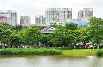 湖泊大楼大厦建筑风景图片