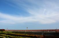初秋的红海滩