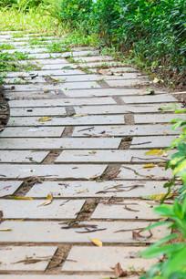 惠州南湖公园的小路