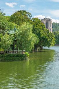 惠州南湖公园湖边风光