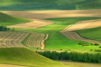 美丽的山区农田秋景