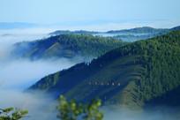 山林云雾迷漫