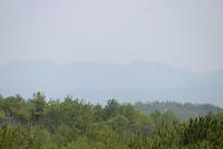 高山与森林