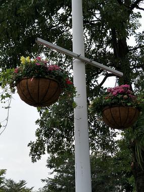 公园花艺景观