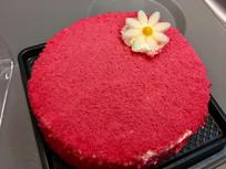 红色小花迷你蛋糕