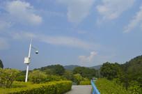 蓝天下的桥面