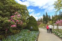 花卉和游客