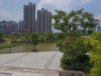 惠州鹿江公园的池塘