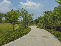 惠州鹿江公园的道路