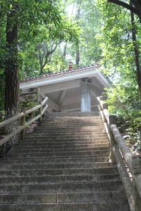 南山公园台阶