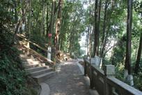 台阶路与石头路
