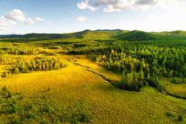 航拍山林草甸小溪