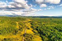 山路蜿蜒的绿色森林(航拍)