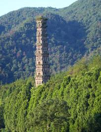 树林中高耸的古塔