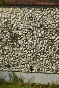 特色蚌壳墙