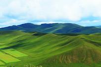 绿色的山脉