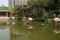 园林仙鹤雕塑