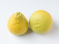 长寿沙田柚