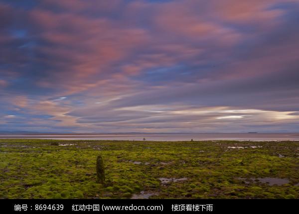 海岸的景色图片
