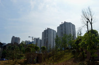 黎平城南新区的高楼