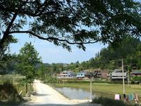 黎平县中潮镇潘老村的道路