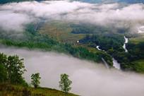 湿地云雾风景
