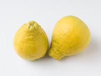 中华名果重庆长寿沙田柚