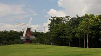 草坪上的荷兰风车